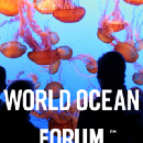 About the World Ocean Forum