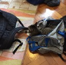Luggage Vs Travelling: Top Tips for a Smooth Journey.
