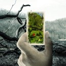 3 Reasons you Shouldn't Care about the Environment
