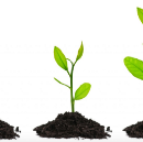 You Raised Seed Money, Now What?