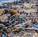 Ocean plastic waste getting you down? Bust through the Negativity Bias: Become a Problem Lover