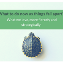 What to do now as things fall apart? What we love, more fiercely and strategically.
