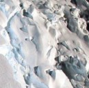 An iceberg the size of Delaware just broke off Antarctica