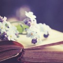 A Tuft of Flowers—Connecting with Poetry in Our Busy Lives