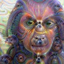 #Deepdream is blowing my mind