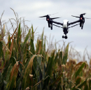 Agriculture in the Digital World