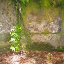 The Mysterious Kaimanawa Wall: Man-made megalithic structure or work of nature?