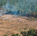 Giving land rights to communities stops deforestation. Here's the evidence