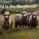 """How old is the shepherd?"" — The problem that shook school mathematics"