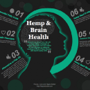 The Use of Cannabis in Medicine, With Research Citations