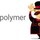 Introduction to Polymer