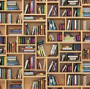 A UK SCHOOL WITHOUT A LIBRARY? INCOMPREHENSIBLE