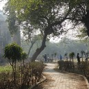 Navigating Delhi   Tips for a Smooth Arrival into India's Bustling Capital