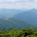 Best Hikes in Asheville, NC