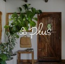 Does Airbnb plus really let it have the BNB vibe or have we gone too far?