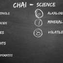 Science of chai