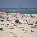 Shades of Green: Drowning in Plastic