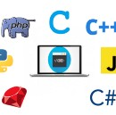 What's the Best Programming Language to Learn First?