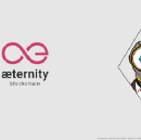 ICO Review of : Aeternity blockchain (Aeon tokens)