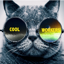 Pourquoi Cool & Workers ?