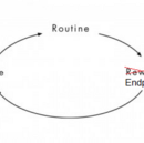 Infallible Framework for Habit Development | Part I: The Habit Loop and Its Endpoint