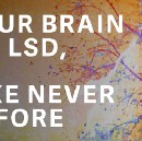 Quartz : For the first time ever, scientists scanned a brain on LSD using modern technology.