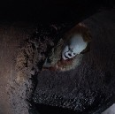The Movie Lover's Review: IT (2017)