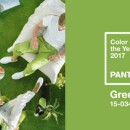 Pantone's Color of the Year 2017 is…