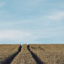 Who Knows Best When It Comes to Farm Data?