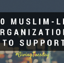 10 Muslim-led organizations to support this #GivingTuesday