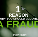 1 Reason Why You Should Become a Fraud