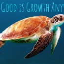 How Good is Growth Anyway?