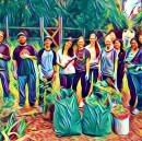 Building a Diverse Engineering Team