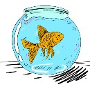 Learning in the Age of the Goldfish