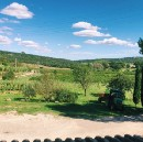 Unexpected Life Lessons at a Winery Paradise Prison