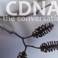 DNA of Collaboration