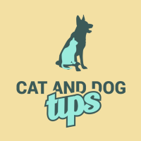Cat And Dog Tips