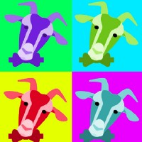 Nutty Goat's Gift Ideas