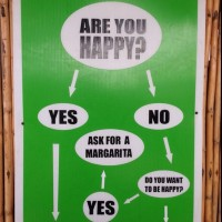 Why Are You Happy?
