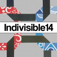 Indivisible14
