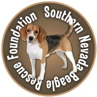 Southern Nevada Beagle Re