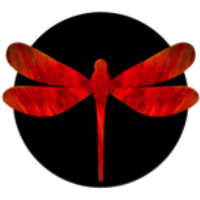 Dragonfly Group Blog