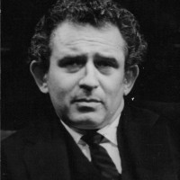 The Norman Mailer Society