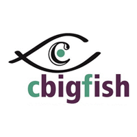 Cbigfish E-Solutions