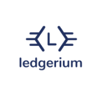 Ledgerium Team