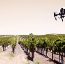 Drones In Agriculture: Putting Your Drone to Work in the Field This Season