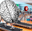 Welcome to the Brain Gym