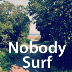 Go to the profile of NobodySurf