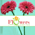 Go to the profile of Flowers And You
