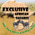 Go to the profile of Uganda Safari Expert